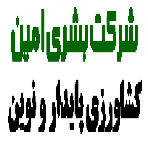 شرکت بشری امین