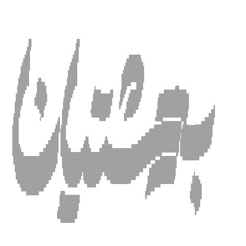 نما شرکت تولیدی کفش بهشتیان